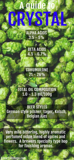 Crystal hops for brewing, homebrewing Crystal hops for sale