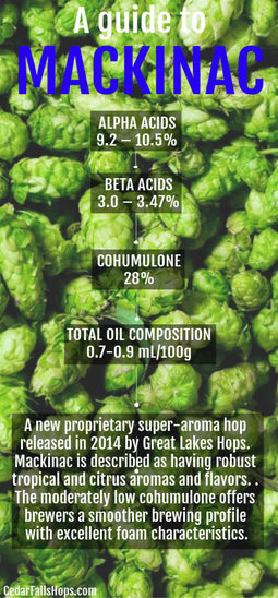 Mackinac hops for sale, brewing and homebrewing